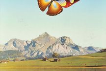 St.Gallen Historical Posters / Historical travel and event posters from St. Gallen