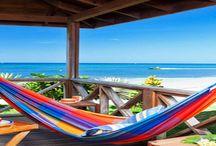 Roatan Island Life / Wish You Were Here!