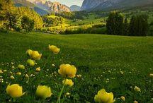 Пейзаж,природа,лодки,маяки...