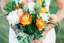 Flowers / Sense and sensibility