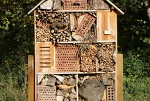 Insektshotell, Fuglehus og annet småsnekring