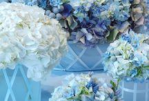 Floral & Decor - Blue