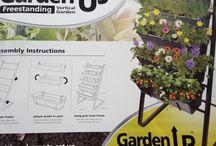 my future vegie garden