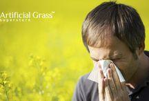 Artificial Grass News and Updates