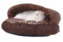 Cat Beds / Some cute cat beds