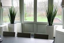 Design Kunstplanten / Artificial Plants / Topkwaliteit kunstplanten vindt u op dit moodboard.