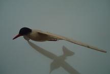 Pássaros em Madeira / Wooden Birds