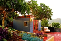 Shed Ideas / by Staci Wolfe