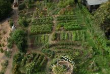 Permaculture Design / Design elements you can implement