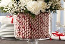 kerstbloemen clusius opdracht