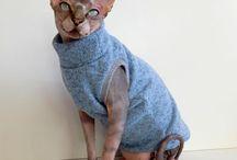 Sphynx Clothes 2015 / Oblečky pro kočičky Sphynx