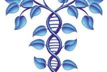 DNA Info