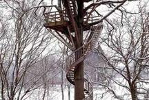 stromový dum 1