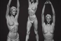 анатомия для скульпторов