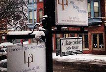 Aesthetics of LPA / Lincoln Park Aesthetics
