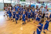 Basket Marcon / Le figure protagoniste del rinnovato percorso marconese sono declinazione di un serio impegno sportivo, ma anche il paradigma di chi, animato da un fine tanto nobile quanto complesso, coniuga passione a capacità organizzative.