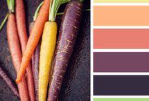 Color / color pallettes, color combinations, color that captivates
