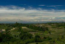 Colours and hills of MonferratoAutum / Hills of Monferrato.