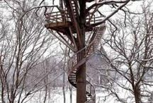 Tree houses to build