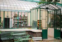 Isadorable Green Paris