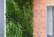 Artificial Green Walls - Interior / Artificial Green Walls are a great alternative to Living Walls as they require very little maintenance and low light locations will not affect them as it would with live plants.  All of our Artificial Green Walls are Bespoke and Made to Order.  So any shape or size is possible.  As we design and manufacture all of our Green Walls we can Export or supply an installation service throughout the UK