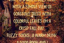Sonbahar güzelliği