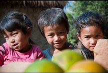 Pořady o Nepálu
