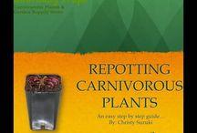 Education / Education On Carnivorous Plants