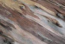 Naturalmente madera. / Se trata de una colección basada en la naturaleza que imita los colores y las texturas de la misma. Los acabados las hacen más resistentes y de tacto más sedosos. Además, si el suelo se desgasta con el uso, se puede pulir, cepillar,  tratar una y otra vez. Incluso permite cambios de color y acabado.