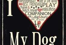 I Love My Dog ♥♥ quotes / i love my dog <3 / by Maryann