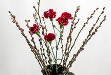 Tavasz váró / Áldozatomul esett pár szál virág! Remélem nektek is segít egy kis tavaszi hangulatot hozni ez a néhány kép. :)