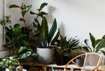 LivingroomstuttgarterStr