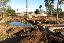 Permaculture Designs and Installs / A collection of pics from job sites and the computer itself.  Global project development being documented.