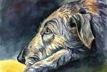 Irish Wolfhound Art by Lyn Hamer Cook / My artwork of the Irish Wolfhound.