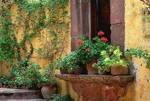 Windows • ventanas / Bellas, practicas, de colores, vistosas...diferentes