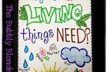 Science-living things & habitats