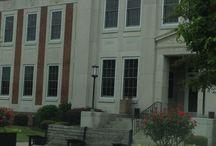 Lexington, South Carolina / Pins that represent all things about Lexington, SC