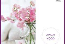 SUNDAY MOOD - IOMA