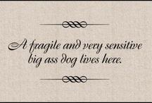 Paw quotes