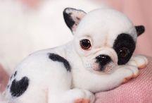 강아지미니