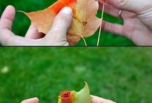 Decorazioni con foglie