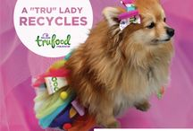 Wellness Pet Food Brigade / This board highlights the Wellness Pet Food Brigade with TerraCycle. Sign up here: http://bit.ly/1FkKM00