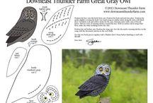 sova. owl