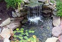 Ponds&water features