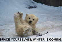 Brace yourselves, winter is coming!