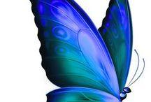 Só borboletas