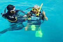 Pulau Sepa / Open water diving juga bisa di pulau sepa, Gathering di pulau bidadari bersama Garuda Adventure - call 08777-349-0007 http://www.garudaadventure.com