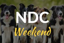 Natural Dog Conference / We've got our weekend ticket and we're raring to go!!