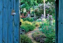 Garden ideas / by Lucy Allen