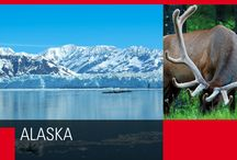 Alaska / Una natura incontaminata che sorprende e incanta ad ogni sguardo.